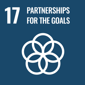 UN Sustainable Development Goal 17 logo