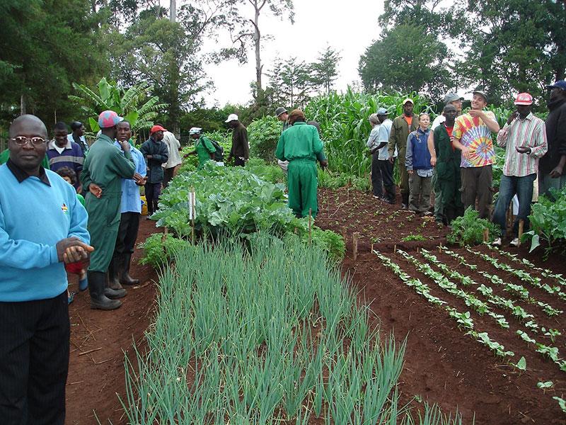 Farming at MHAC